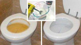 Avis à TOUTES ET TOUS : Ce Mélange Fait maison nettoie les toilettes et la salle de bain PLUS EFFICACEMENT que n'importe quel autre produit ménager … Efficacité GARANTIE !!