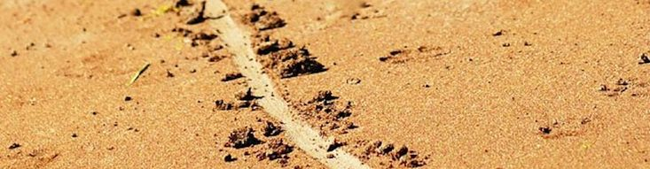 You Need the Line in the Sand… Sometimes. http://www.leadtheteam.net/blog/linkedin-articles/authoritarian-leadership-you-need-the-line-in-the-sand-sometimes/?utm_campaign=crowdfire&utm_content=crowdfire&utm_medium=social&utm_source=pinterest