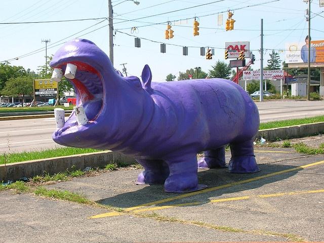 Purple Hippo in Muncie, Indiana
