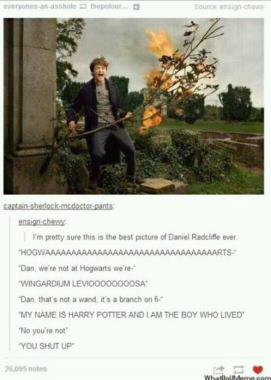Daniel Radcliffe as Harry Potter with a flaming stick | FOR HOGWARTS