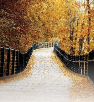 Stoney Creek, Ontario