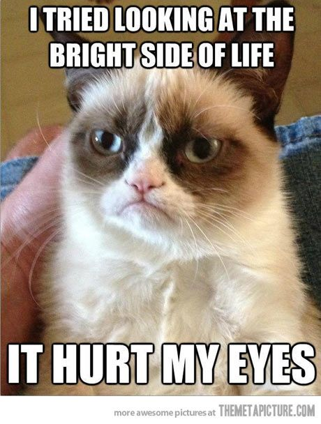 The bright side of life…