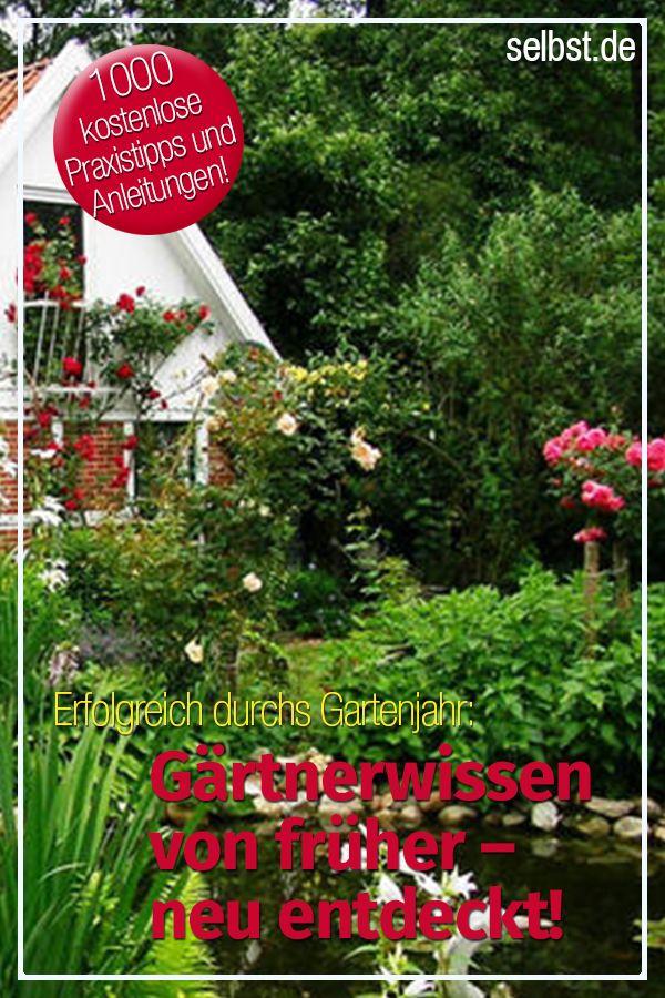 Garten Garten  Balkon Pinterest - garten selbst gestalten tipps