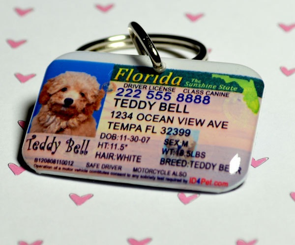 Dog Tags  Florida Driver License Pet ID Tags by ID4Pet on Etsy, $25.00