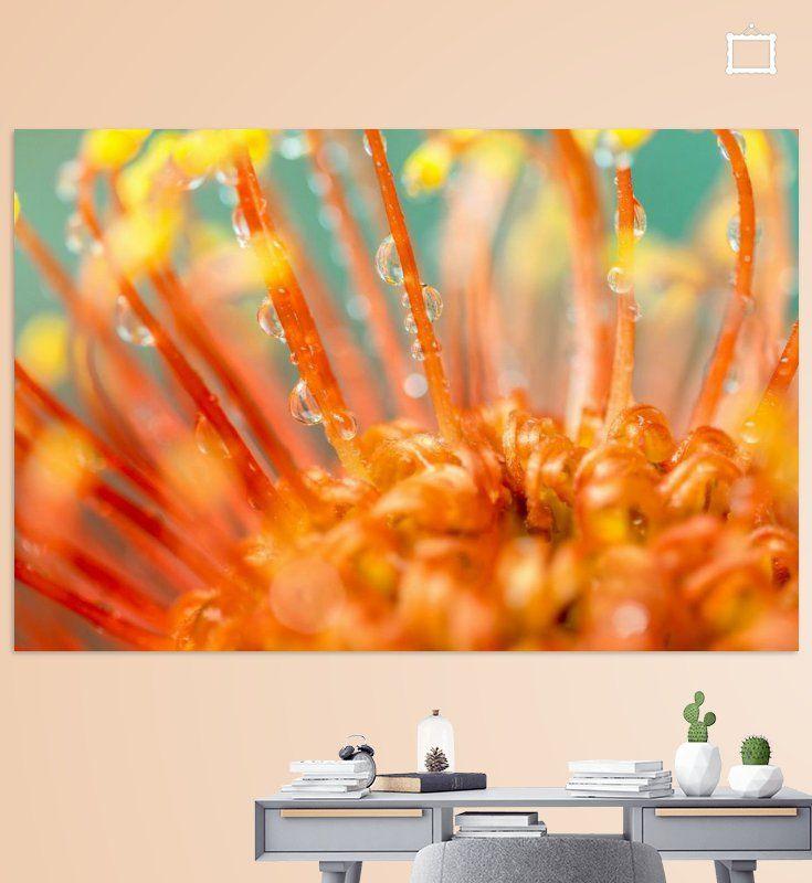 Nieuw in mijn Werk aan de Muur shop: Oranje bloem met waterdruppels
