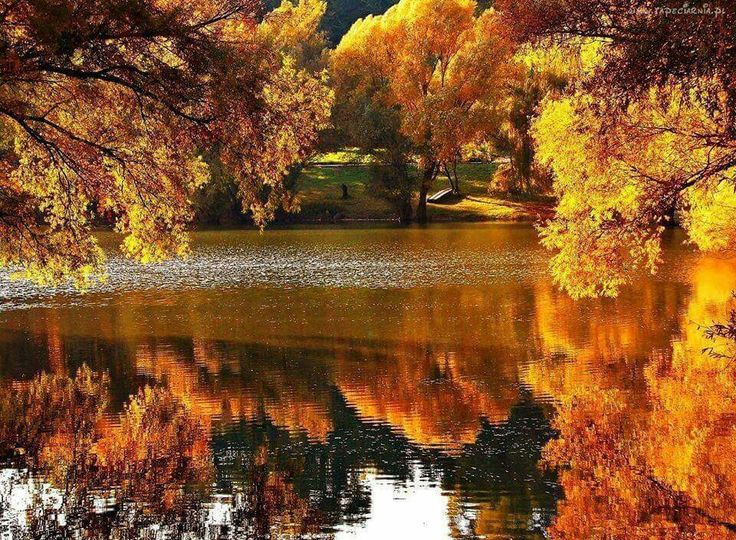 Картинки, красивые гифы природа осень