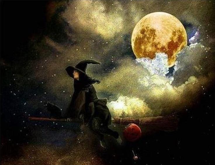 mary moon and the stars essay