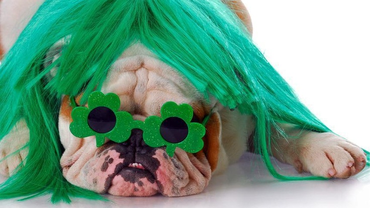Happy St. Patrick's Day! Are you wearing green today?