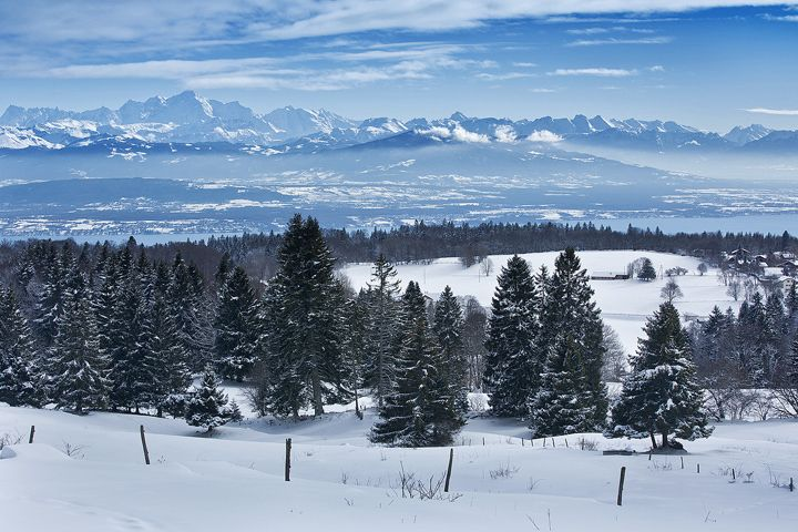 Winter Landscape - by Christopher Waddell: Winter Landscape, Pinterest Photographers