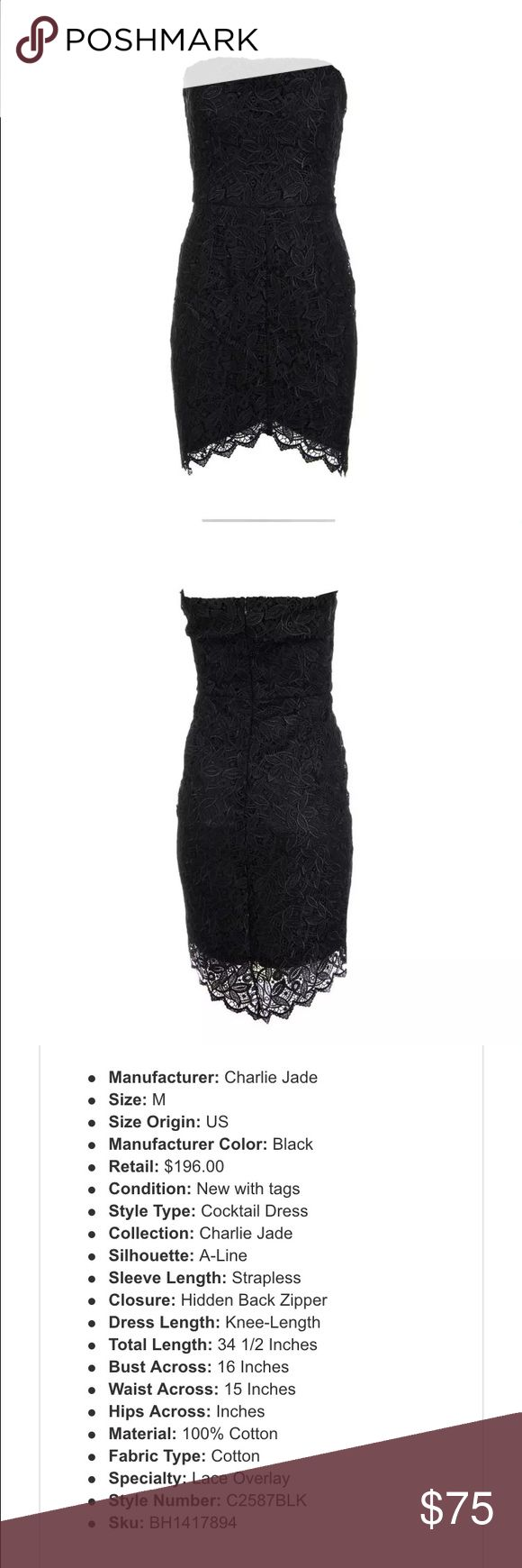 Charlie Jade Cocktail Dress Gorgeous, elegant dress with zip back and lace design that falls lower in back. charlie jade Dresses Mini