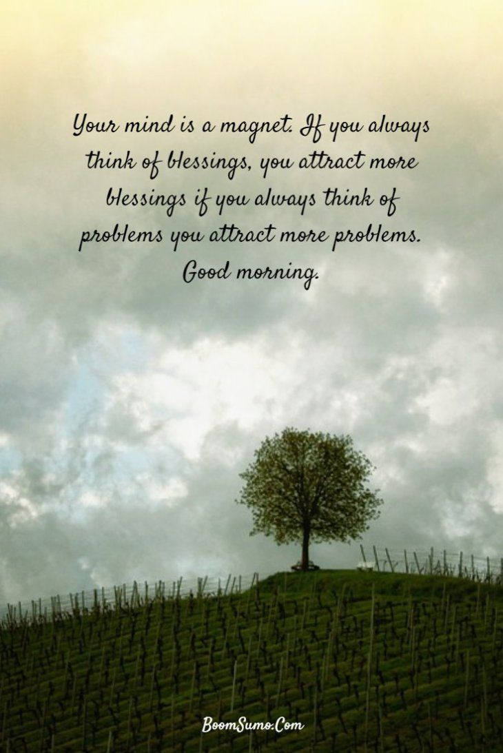 147 Beautiful Good Morning Quotes Sayings About Life Mornings Q