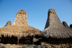 TWA-0001166 © WestPix Traditional houses built from bamboo and thatch. Weihola village, Sumba.