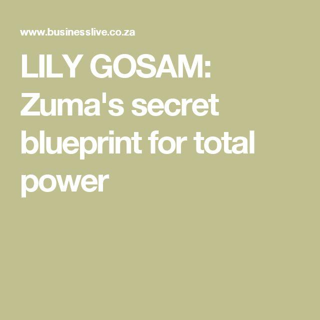 LILY GOSAM: Zuma's secret blueprint for total power