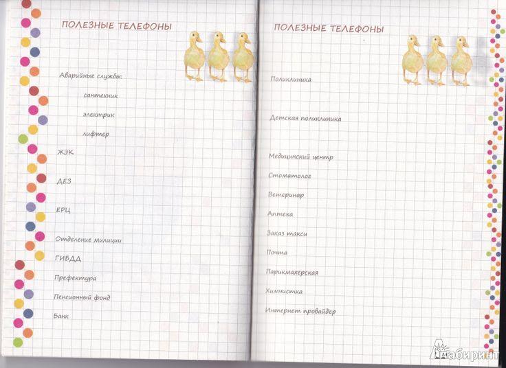 Иллюстрация 4 из 13 для Книга для записи домашних расходов на год | Лабиринт - канцтовы. Источник: Nadinka&