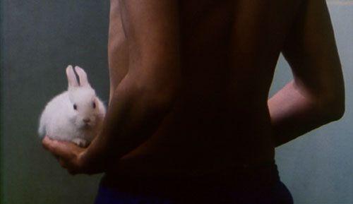 Nenette et Boni (1996)
