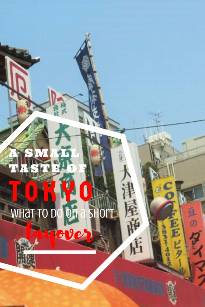 A Small Taste of Tokyo - What To Do On An 8-Hour Layover - life untraveled
