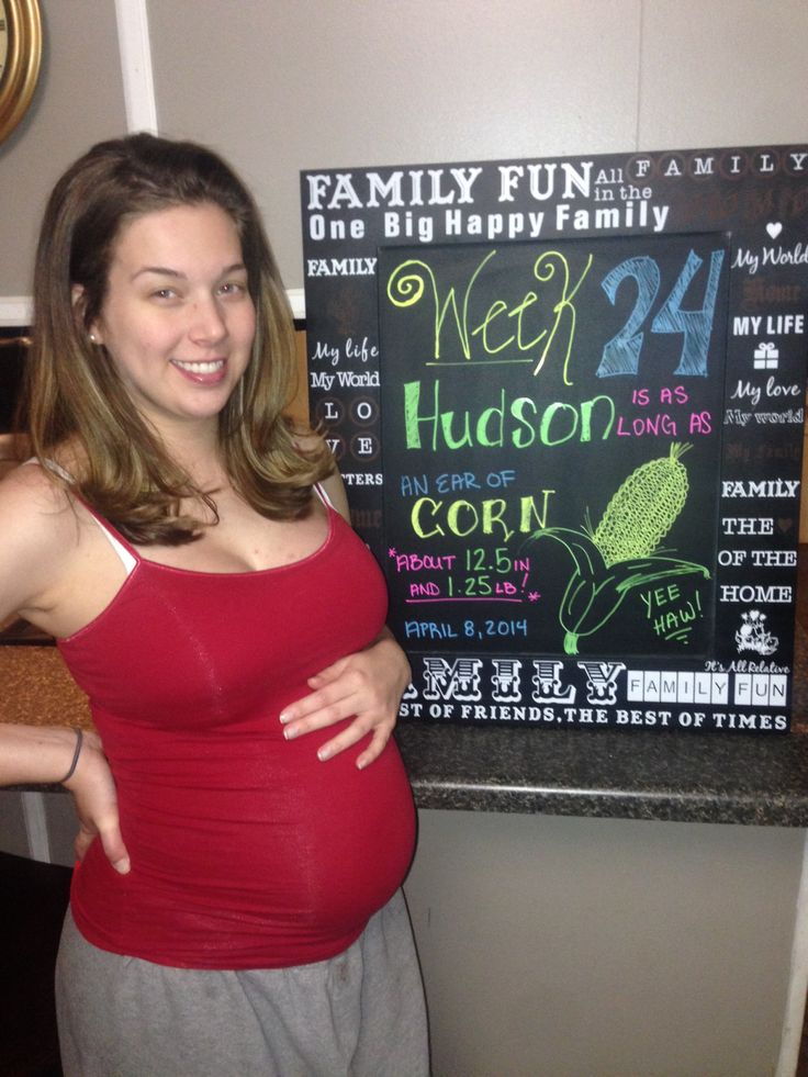 24 weeks pregnant. pregnancy chalkboard. Baby size. Ear of ...