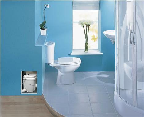 1000 Ideas About Upflush Toilet On Pinterest Basements Basement Remodelin