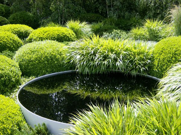 Metal reflecting bowl amongst Japanese forest grass and box ball topiary