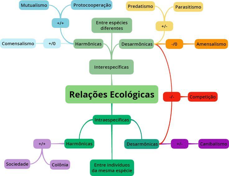 Mapa Mental: Relacoes Ecologicas