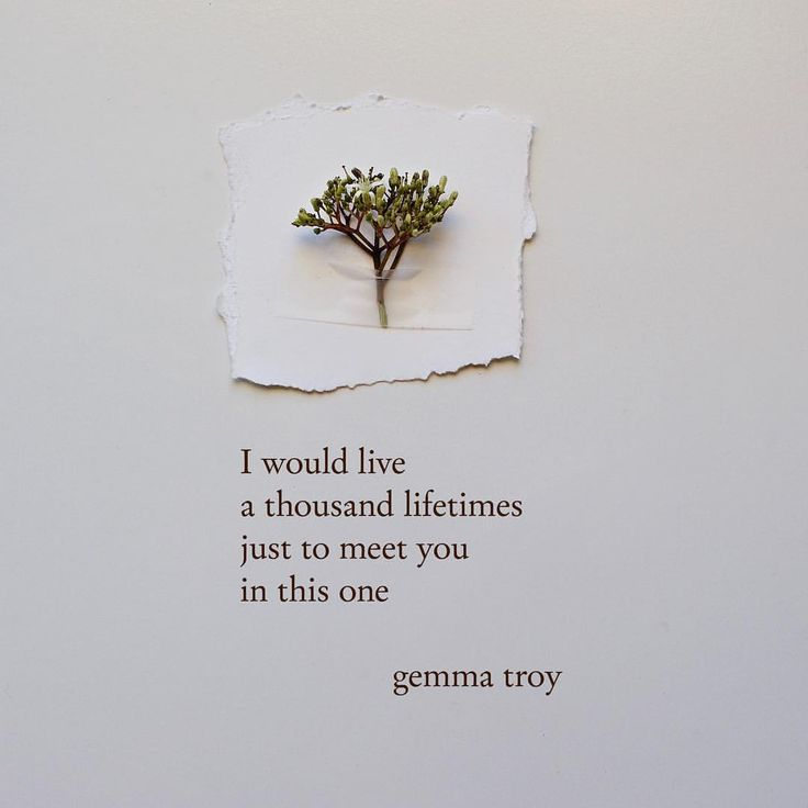 "5,311 Likes, 56 Comments - Gemma Troy Poetry (@gemmatroypoetry) on Instagram: ""Thank you for reading my poetry and quotes. I try to post new poems and words about love, life,…"""