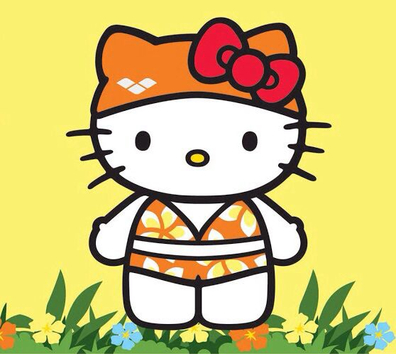 599 best hello kitty images on pinterest