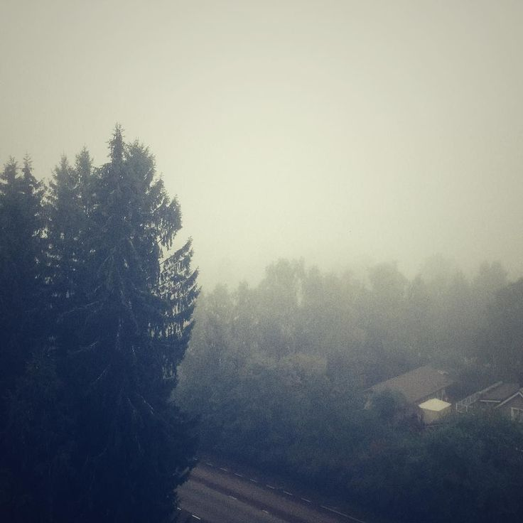 It is a bit misty this morning #morning #mist #autumn #wintercoming @visitkouvola @ourfinland