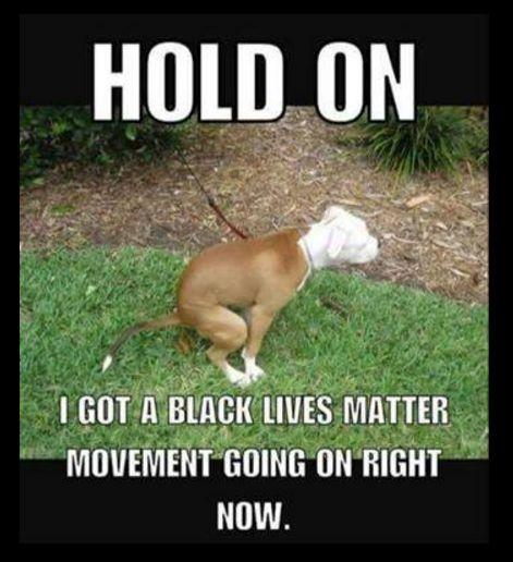 2131f0ea7063a87d8846e67b8ea32f10 funny vintage black lives matter 22 best black lives matter is a terrorist organization images on