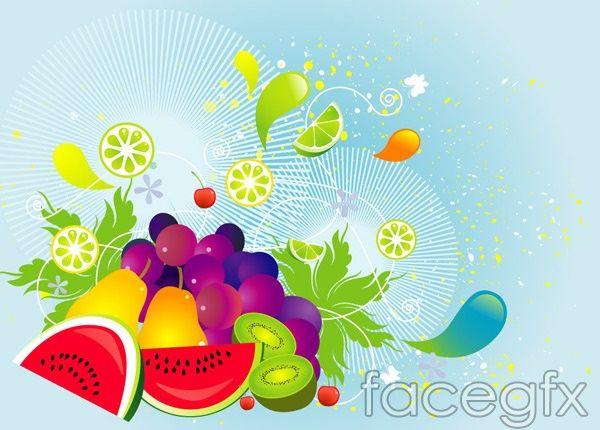Vector illustration of fruit melon grape blackcurrant