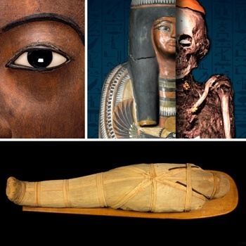 QLD Museum - Mummy: Secrets of the Tomb.  All the way from the British Museum I will definitely be taking my little ones to see this amazing exhibition.