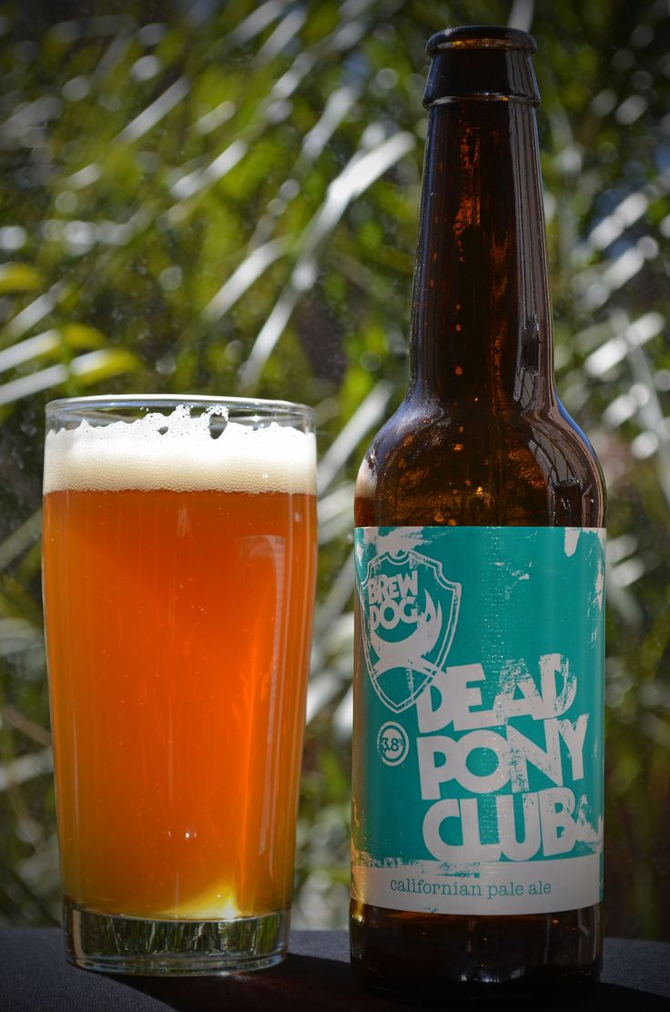 Brew Dog - Dead Pony Club