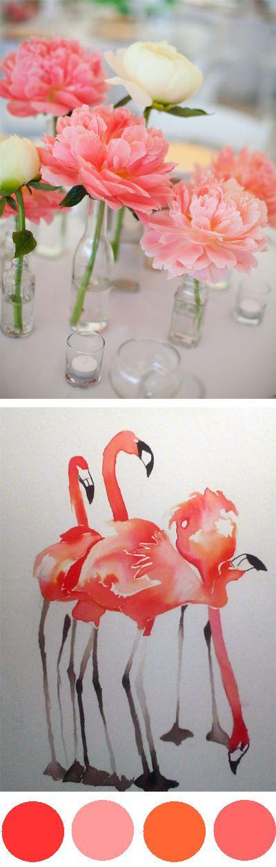 Flamingo: Coral Color Pallete, Color Pallets, Beautiful Coral, Coral Wedding Ideas, Coral Weddings, Coral Color Scheme, Coral Pink Wedding, Photo