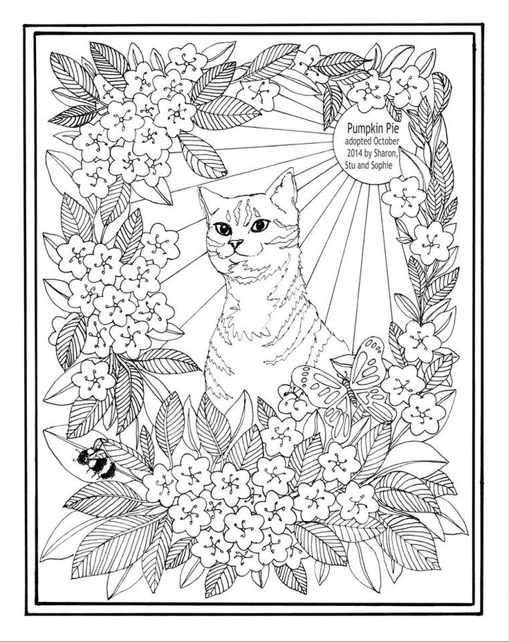 animal shelter coloring pages | 511 best images about Animals to Color on Pinterest