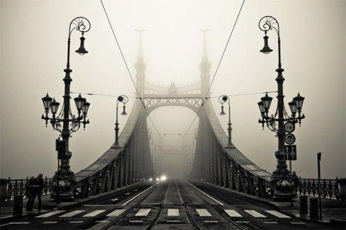 The Liberty bridge over the Danube, Budapest, Hungary
