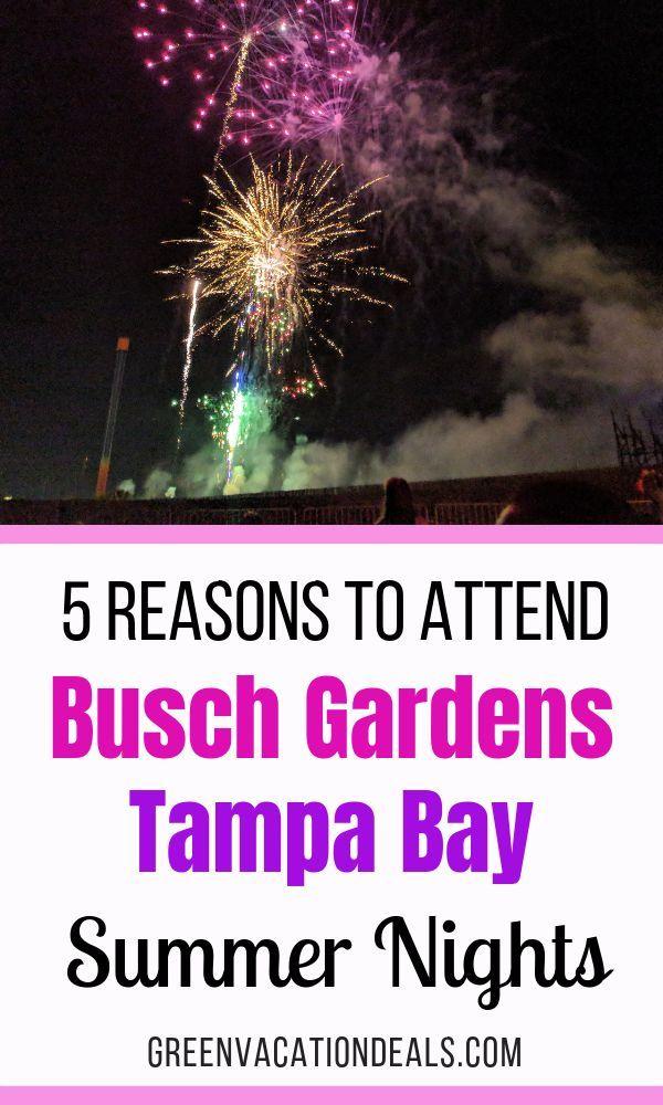 New Year's Eve Busch Gardens