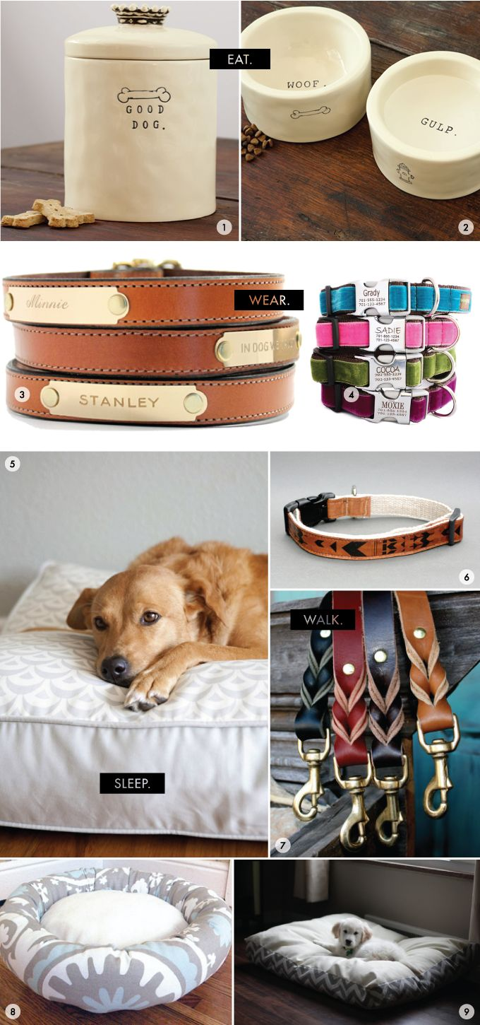 Fancy dog accessories, the plated collars and leashes are perfect…