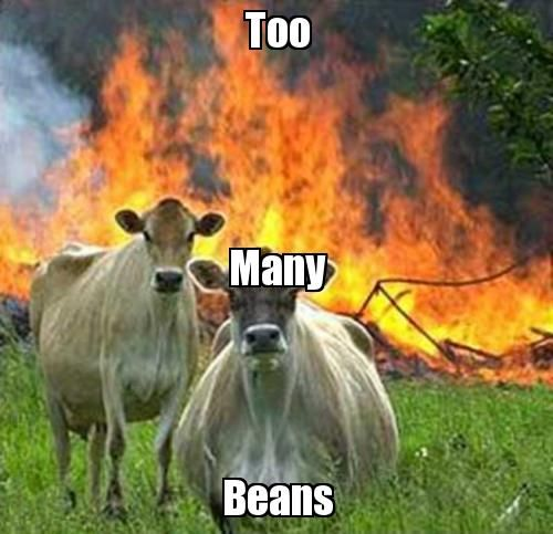 Attack Of The Funny Animals - 70 Pics   Dog farts, Funny ...   Animal Fart Memes