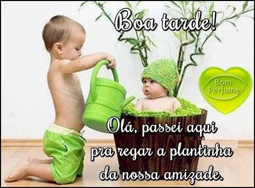 Boa Tarde: 251 Best Images About Boa Tarde On Pinterest