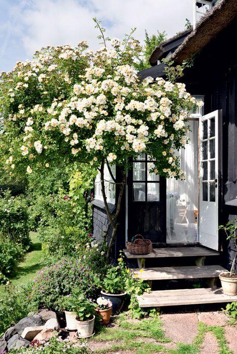 hus og have og hvor dejligt er det ikke at bo i husoghave til dem som vil det. nu er jeg i husoghave.