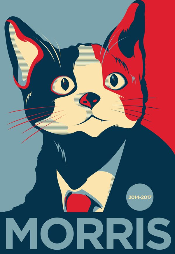 Click For Agitprop Images Supporting El Candigato Morris A Cat Running For Mayor In The