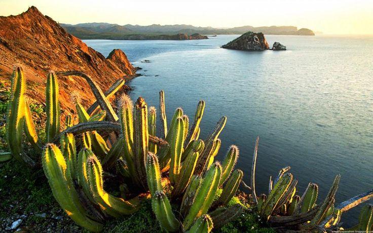 День 12 - Канкун или Четумаль Путешествие можно закончить доехав до Канкуна и продолжить наслаждаться карибскими пляжами или добраться до Четумаля, чтобы продолжить путешествие по Белизу.