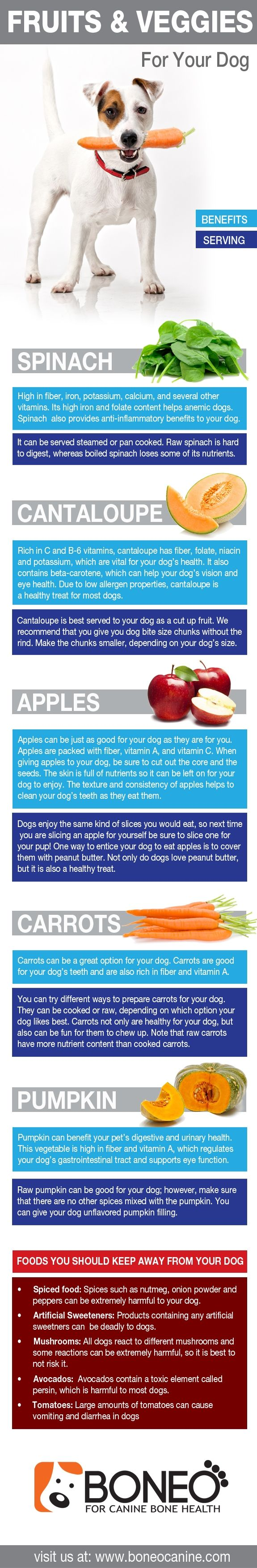 Dog infographic about healthy fruits and vegetables to give to your dog.