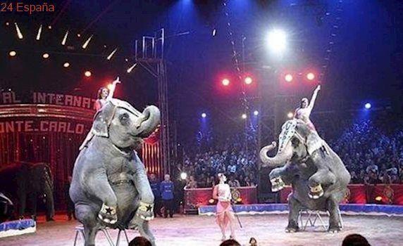 Grupos animalistas boicotean al Gran Circo Mundial en Ciudad Real