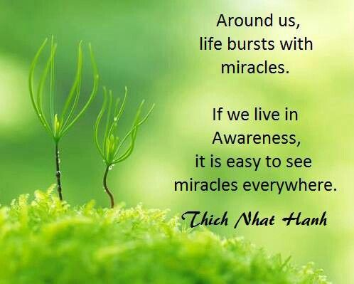 """Daily Mindfulness: """"Around us, life bursts with miracles. If we live in Awareness, it is easy to see miracles everywhere."""" (Thich Nhat Hanh Quote)  // BuddhaBird Spiritual Art Shoppe (Shop Online Soon @ Etsy https://www.etsy.com/people/buddhabirdshoppe ) //"""