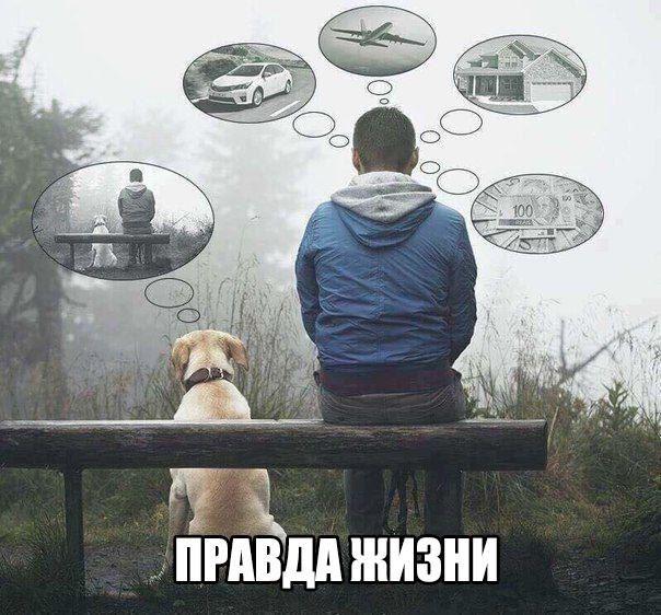 """ПРАВДА ЖИЗНИ http://pyhtaru.blogspot.com/2017/03/blog-post_724.html   Читайте еще: ================================ ЛЕТО ДО ДЕКАБРЯ http://pyhtaru.blogspot.ru/2017/03/blog-post_333.html ================================  #это_интересно, #самое_забавное_и_смешное, #это_смешно, #юмор, #полезно_знать, #человек, жизнь, #собака  Хотите подписаться на нашу газете?   Сделать это очень просто! Добавьте свой e-mail и нажмите кнопку """"ПОДПИСАТЬСЯ""""   Далее, найдите в почте письмо и перейдите по ссылке…"""