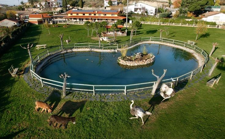 Estanque dentro de la finca La Noria, con visitas libres y gratuitas desde las  casas rurales La Noria.