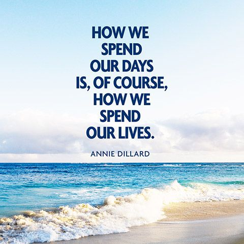 annie dillard s seeing importance of how By annie dillard, it is emphasize the value of pursuing an important goal   this story has a children's light way of seeing the problems and this mood is felt  by.