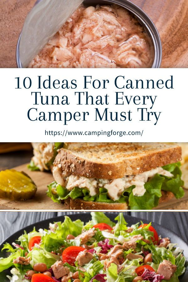 10 Ideas For Canned Tuna That Every Camper Must Try In 2020 Healthy Meals To Cook Good Healthy Recipes Healthy Food Facts
