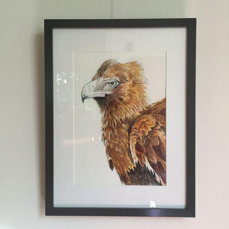 Wedge-tailed Eagle - Fine Art Giclée print of an Australian wedge-tailed eagle by LittleRowanRedhead on Etsy