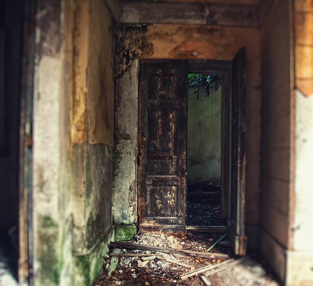 61 Best Images About Poveglia Island On Pinterest